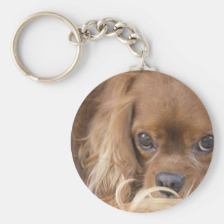 Sweet Ruby Cavalier King Charles Spaniel Basic Round Button Keychain