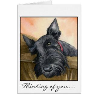 Sweet Scottie, Bailey... Greeting Card