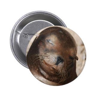 Sweet Sea Lion Button