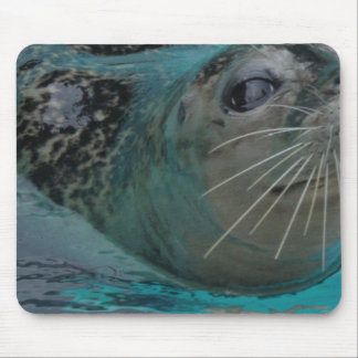 Sweet Seal Mouse Pad