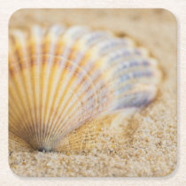 Sweet Seashell Square Paper Coaster