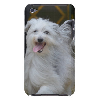 Sweet Sheepdog Barely There iPod Cover