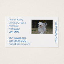 Sweet Sheepdog Business Card