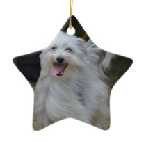 Sweet Sheepdog Ceramic Ornament