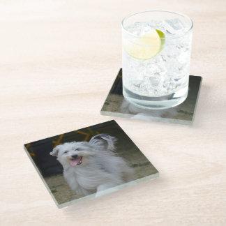 Sweet Sheepdog Glass Coaster