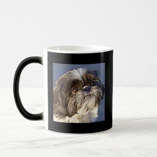 Sweet Shih Tzu Puppy Morphing Beverage Coffee Mug