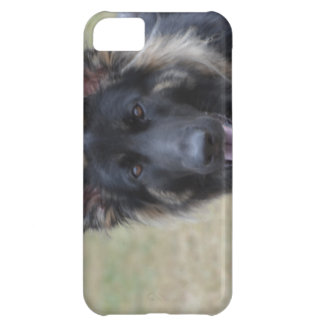Sweet Shiloh Shepherd iPhone 5C Case