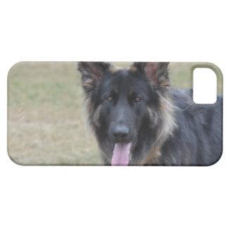 Sweet Shiloh Shepherd iPhone SE/5/5s Case