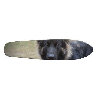 Sweet Shiloh Shepherd Skateboard Deck