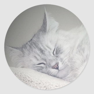 Sweet Siberian Dreams Sticker