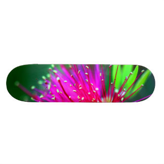 Sweet Sissy Floral Pink Girly Girl Skateboard