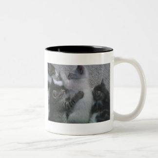 Sweet Sleeping KITTAYS_FOUR Coffee Mug