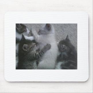 Sweet Sleeping KITTAYS_FOUR Mouse Pad