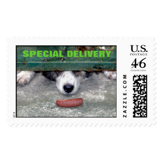 Sweet Smell of Success Almost Postage Stamp