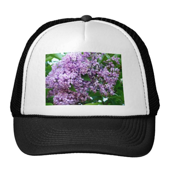 Sweet Smells Of Lilac Female Trucker Hat