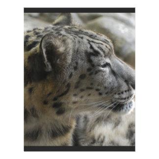 Sweet Snow Leopard Personalized Letterhead