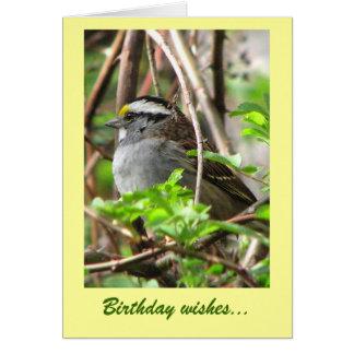 Sweet Sparrow Birthday Card
