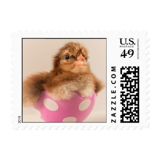 Sweet Spring Chick in Cute Pink Easter Egg Postage