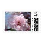 Sweet Spring Stamps Pink Tree Blossom Postage