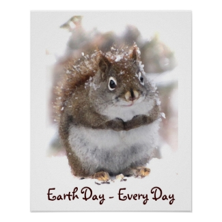 Sweet Squirrel Earth Day Poster