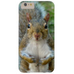 Sweet Squirrel Face iPhone Case Barely There iPhone 6 Plus Case