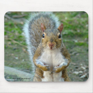 Sweet Squirrel Face Mouse Pad