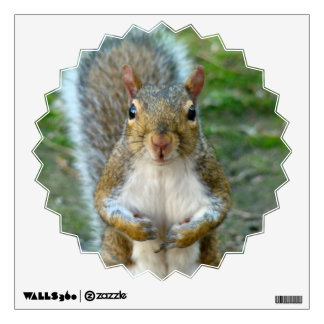 Sweet Squirrel Face Wall Decal