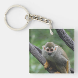 Sweet Squirrel Monkey Square Acrylic Key Chain