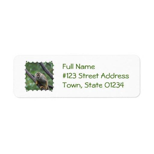 Sweet Squirrel Monkey Labels