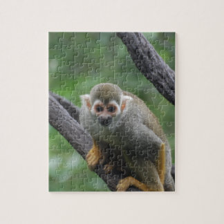 Sweet Squirrel Monkey Jigsaw Puzzles