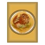 Sweet Squirrel Postcard
