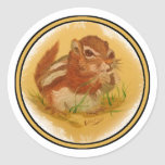 Sweet Squirrel Stickers