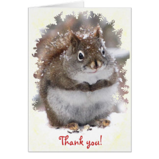 Sweet Squirrel Thank You Greeting Card