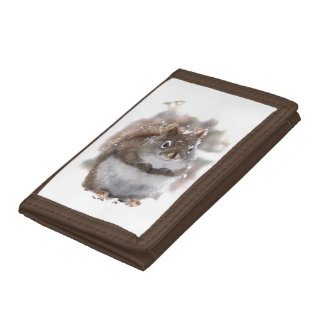 Sweet Squirrel Trifold Wallets