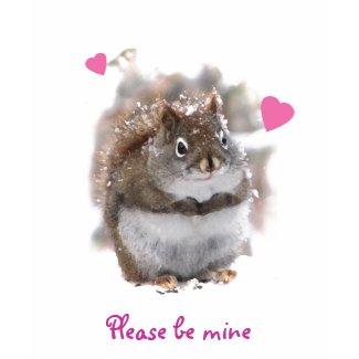Sweet Squirrel Valentine shirt