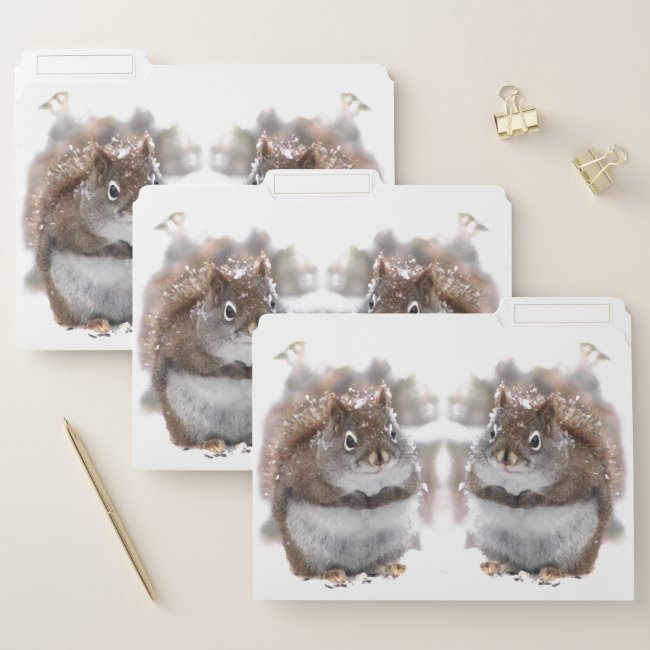 Sweet Squirrels File Folder Set