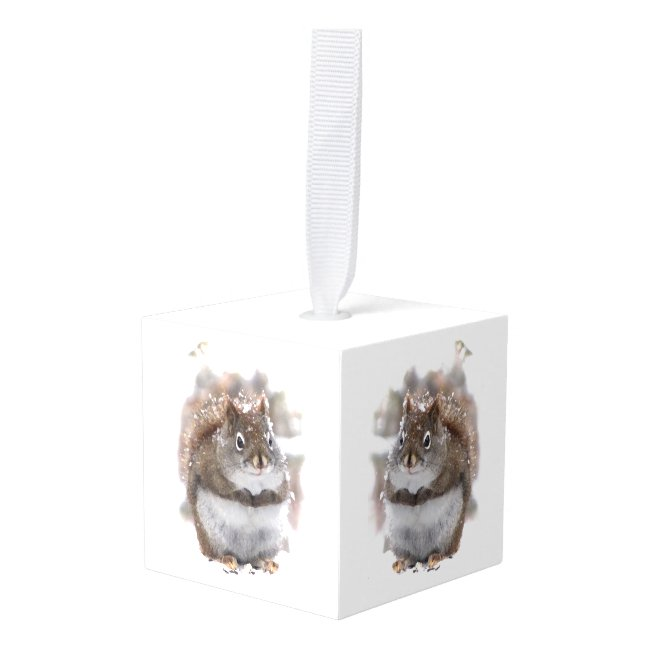 Sweet Squirrels in Winter Animal Cube Ornament