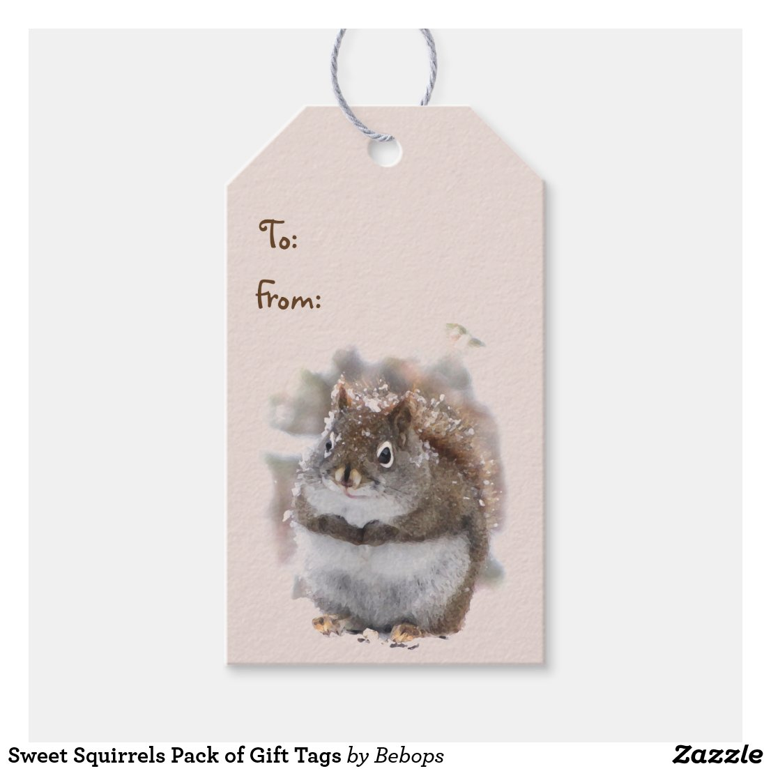 Sweet Squirrels Pack of Gift Tags