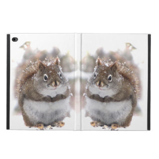 Sweet Squirrels Powis Ipad Air 2 Case at Zazzle