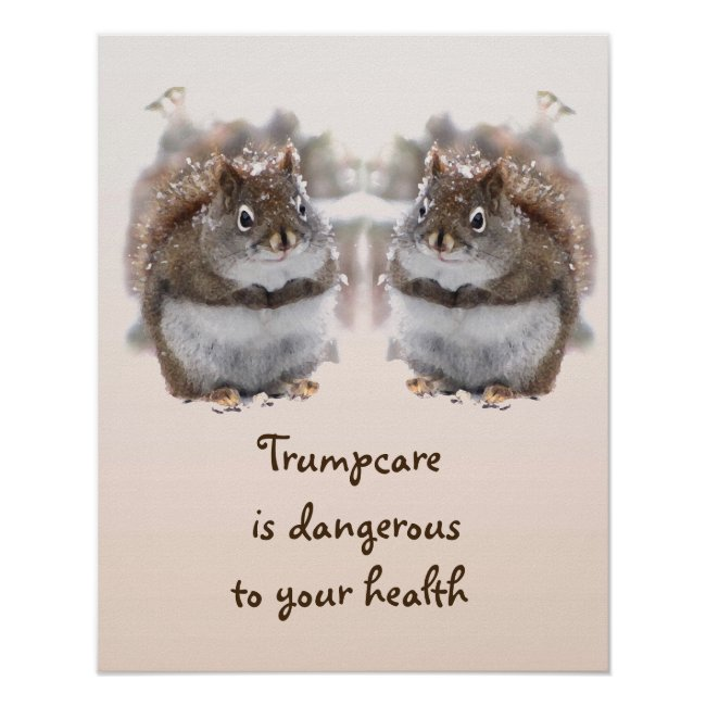 Sweet Squirrels Talk Trumpcare Poster