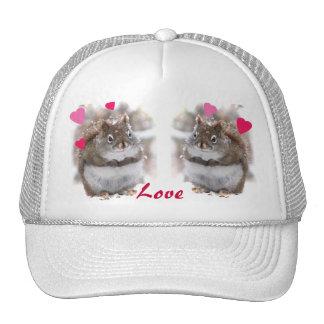 Sweet Squirrels Valentine Mesh Hats
