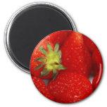 Sweet Strawberries Fridge Magnet