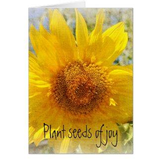 Sweet Summer Sunflower card