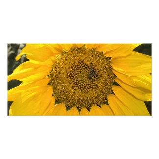 Sweet Sun Photo Card Template