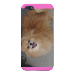 Case Savvy iPhone 5 Matte Finish Case with Pomeranian Phone Cases design