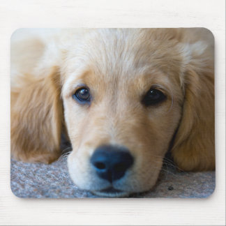 Sweet, Sweet Puppy Mouse Pad