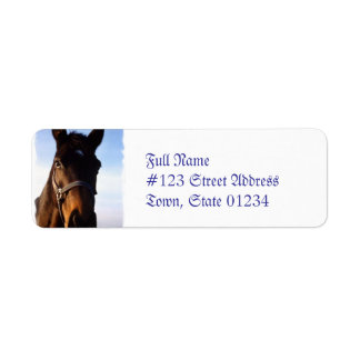Sweet Thoroughbred Horse Mailing Labels