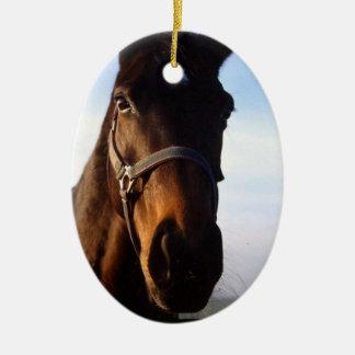 Sweet Thoroughbred Horse Ornament