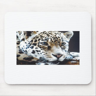 Sweet tiger by Picture kind Mousepads