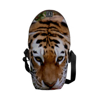 Sweet Tiger Courier Bags